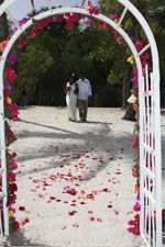 tropical arch and aisle